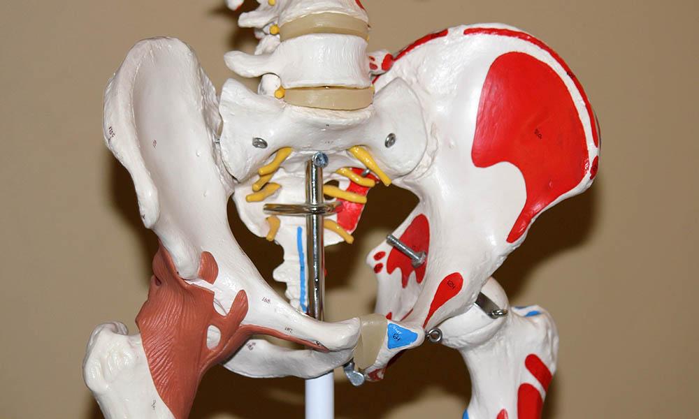 เวชศาสตร์การกีฬา (Sports Medicine)