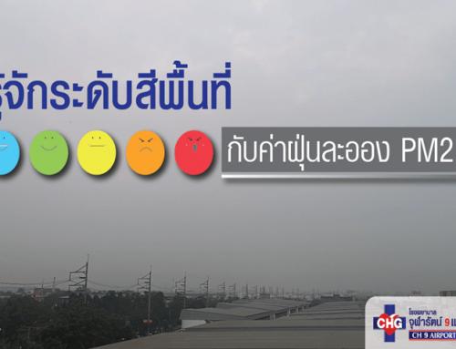 รู้จักระดับสีพื้นที่ กับค่าฝุ่นละออง PM 2.5