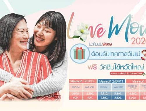 โปรโมชั่น Love Mom 2020