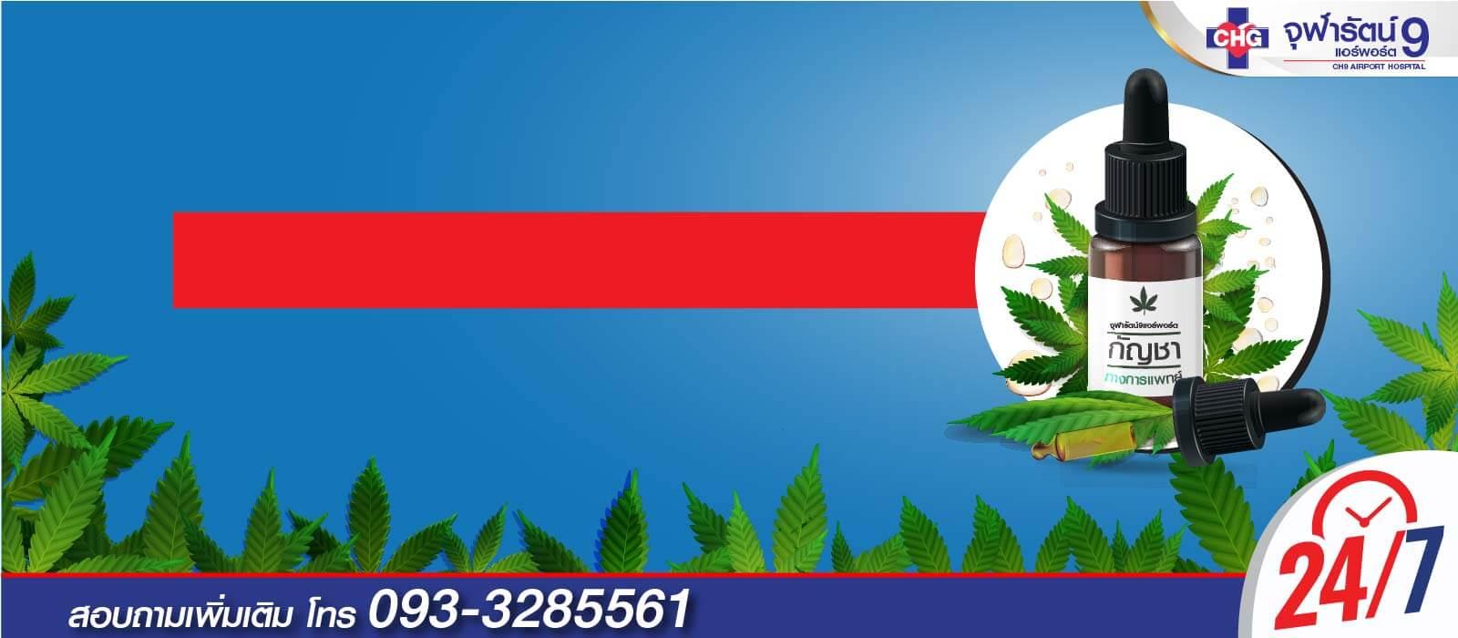 6403-banner-cannabis-1